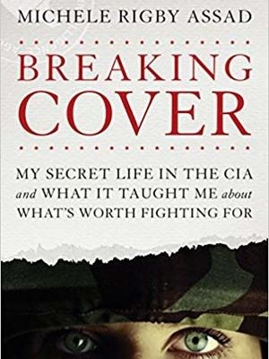 Breaking Cover by Michele Rigby Assad