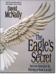 The Eagle's Secret by David McNally