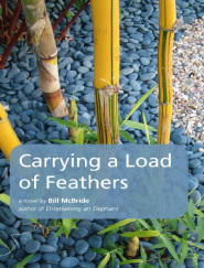Carrying A Load of Feathers by Bill McBride