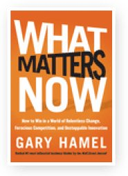 Hamel(What) by Gary Hamel