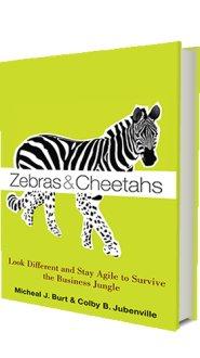 Zebras and Cheetahs by Micheal Burt