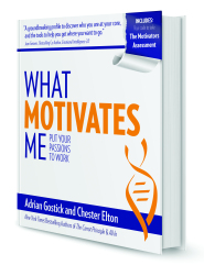 What Motivates Me: Put Your Passions to Work by Adrian Gostick