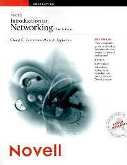 Introduction to Networking by Cheryl Currid